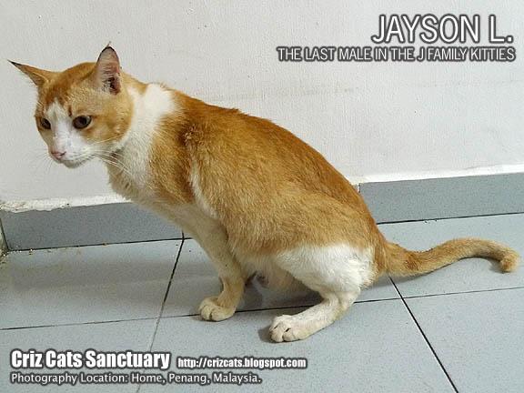 JAYSONFLUTD