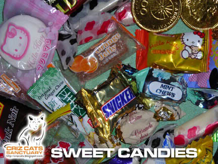 CANDY02