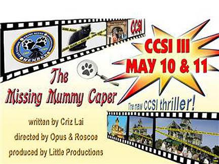 CCSI III